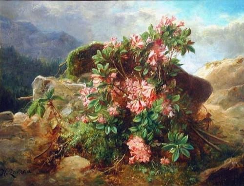 1317319636_alpine-flowers_www.nevsepic.com.ua (500x382, 249Kb)