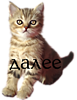 0_2461b3_eeede680_XS (77x100, 16Kb)