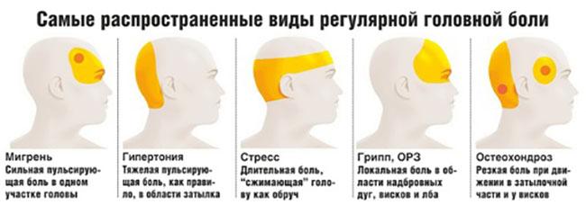 3368205_golovavidiboli (650x228, 47Kb)
