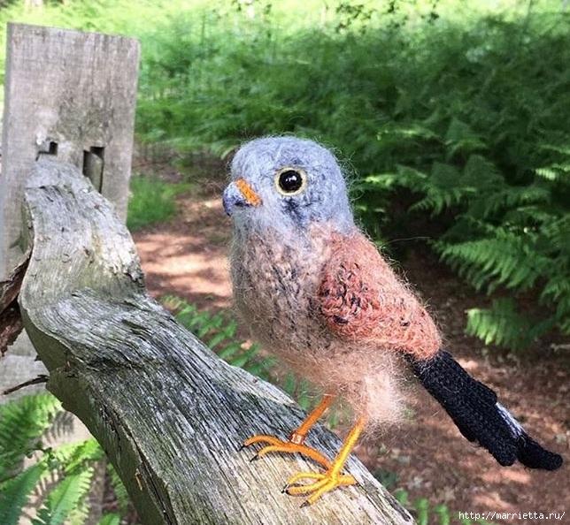 Птичий двор Jose Heroys. Вязаные птички, необыкновенной красоты (11) (644x594, 303Kb)