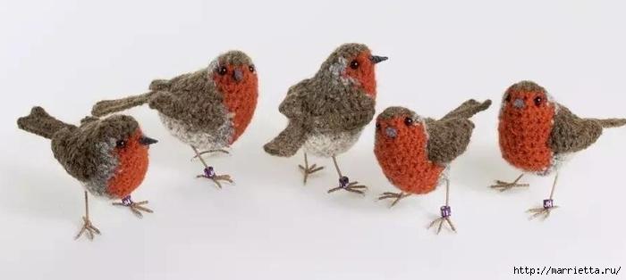 Птичий двор Jose Heroys. Вязаные птички, необыкновенной красоты (35) (700x314, 93Kb)