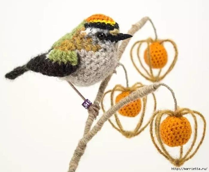 Птичий двор Jose Heroys. Вязаные птички, необыкновенной красоты (49) (700x577, 173Kb)