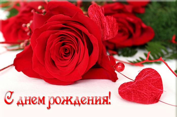 др розы (700x463, 451Kb)
