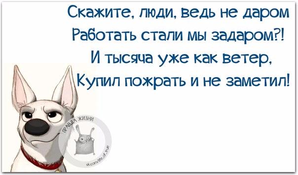 1443460937_frazki-23 (604x356, 156Kb)