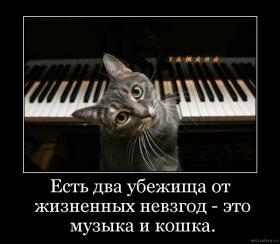 3925311_myzika_i_koshka (280x244, 12Kb)