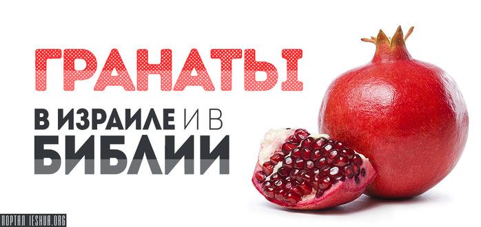 pomegranat1 (700x330, 84Kb)