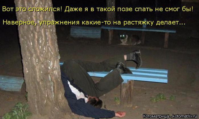 kotomatritsa_9 (700x418, 291Kb)