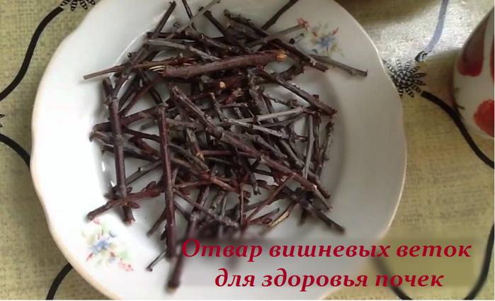 2749438_Otvar_vishnevih_vetok_dlya_zdorovya_pochek (700x425, 363Kb)