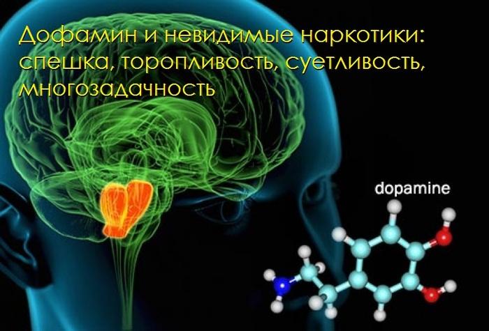 dopamin (700x475, 109Kb)