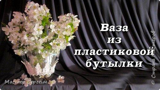 397972_vaza_iz_plastikovoy_butylki_za_5_minut (520x293, 45Kb)