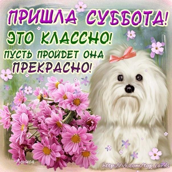 119174855_2298871843 (604x604, 440Kb)