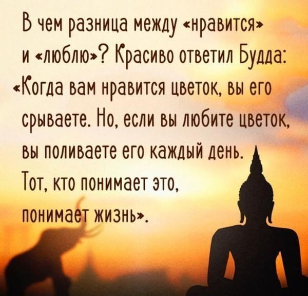 http://img0.liveinternet.ru/images/attach/d/1/135/290/135290734_i99263.jpg
