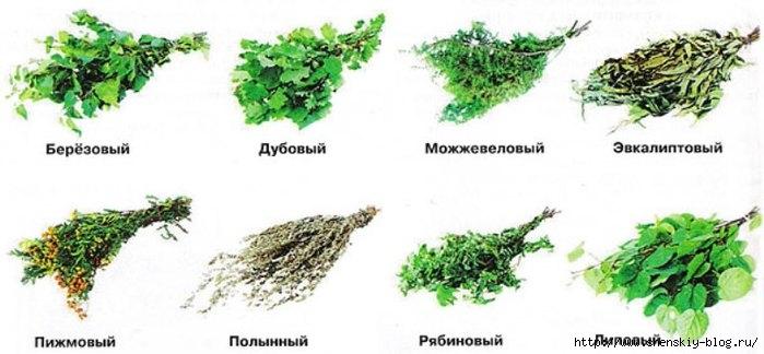http://img0.liveinternet.ru/images/attach/d/1/135/299/135299068_4121583_587651.jpg