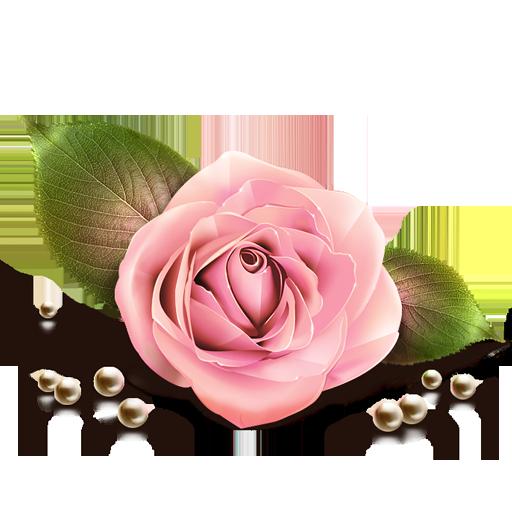 роза с жемчугом клип (512x512, 258Kb)