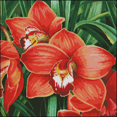 Red orchid (400x400, 276Kb)