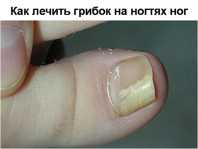 5640974_image (640x480, 60Kb)