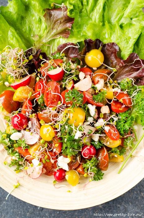 spring-salad-2 (463x700, 373Kb)
