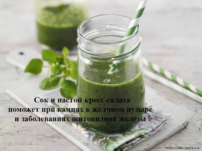 """alt=""""Сок и настой кресс-салата поможет при камнях в желчном пузыре и заболеваниях щитовидной железы""""/2835299__2_ (700x525, 214Kb)"""