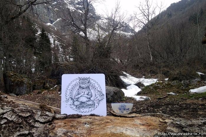 йога-Кот от Shraddha (12) (700x466, 367Kb)