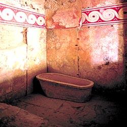 Древняя ванна/4427521_v1 (250x250, 17Kb)