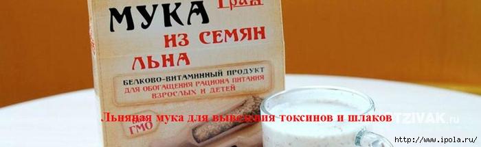 "alt=""льняная мука для выведения токсинов и шлаков""/2835299_lnyanaya_myka_dlya_vivedeniya_toksinov_i_shlakov (700x215, 95Kb)"