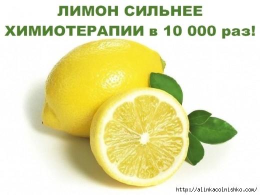 10-000-14903736078gnk4-520x390 (520x390, 86Kb)