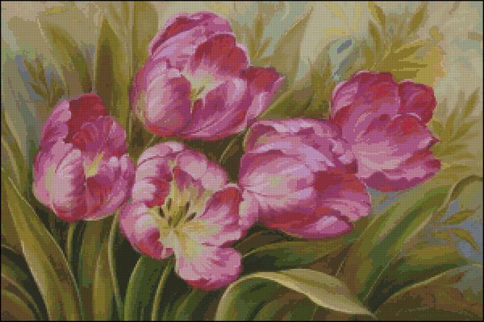 Pink tulips (700x466, 521Kb)