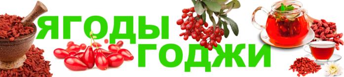 Польза от ягод годжи/6210208_polza_ot_yagod_godji (700x157, 138Kb)