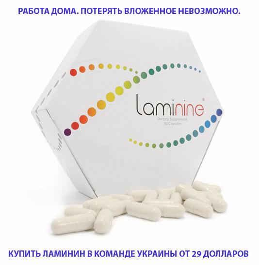 laminine3 UKRAINE777 (534x547, 145Kb)
