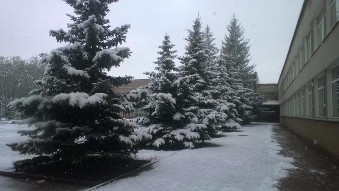 снегапрель3 (700x394, 215Kb)