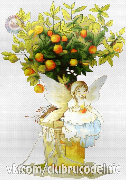 Mandarin (491x700, 513Kb)