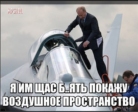 5121882_yl_politika34 (480x389, 50Kb)