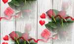Превью krasnye-rozy-butony-heart-love-valentine-s-day-roses-roman-4 (700x420, 333Kb)