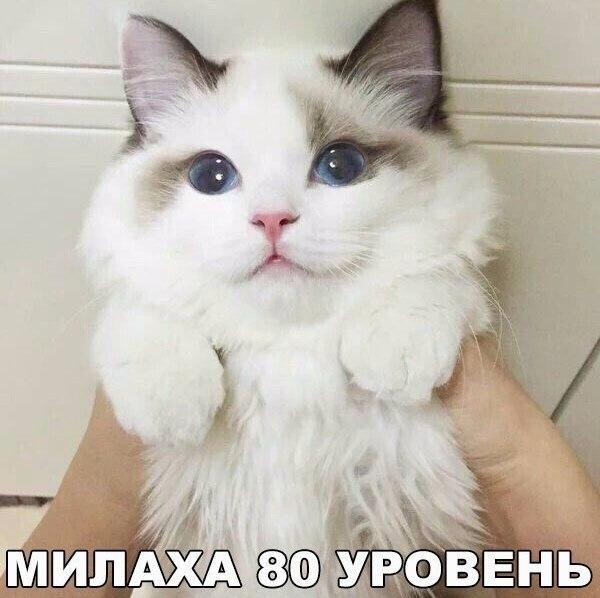 4596068_pozitiv8 (600x598, 56Kb)