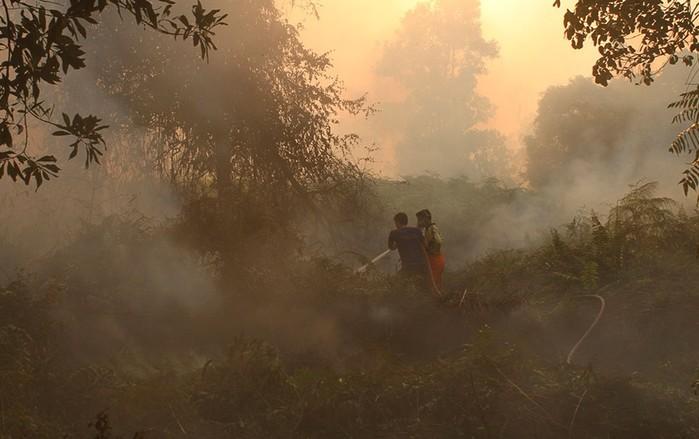 Невероятно густой смог в Сингапуре (фотографии)