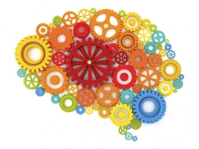 мозг2 (700x525, 146Kb)