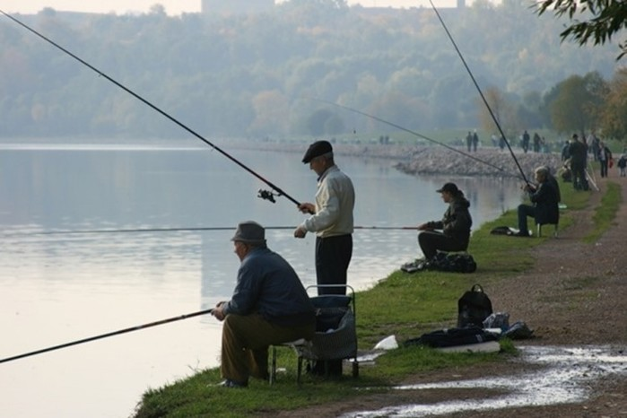 Где ловить рыбу в черте города