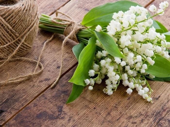 Почему цветы ландыша опасны для здоровья?