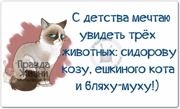 1397072505_frazochki-14 (604x367, 175Kb)