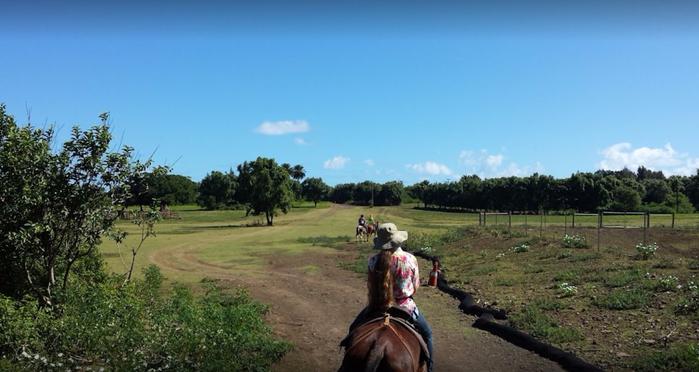 Национальный исторический парк Калопапа гавайи 9 (700x372, 253Kb)