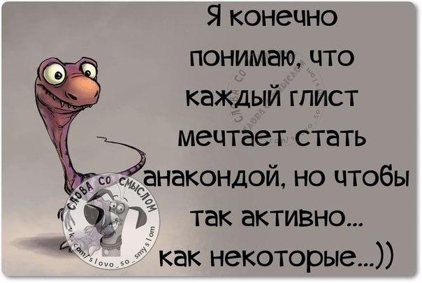 1434307863_frazki-11 (604x405, 147Kb)