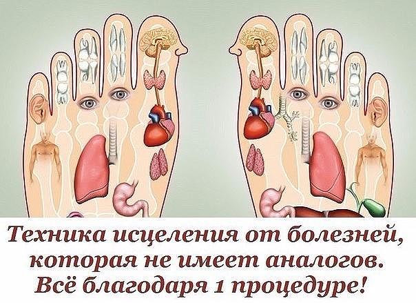 image (8) (604x439, 309Kb)