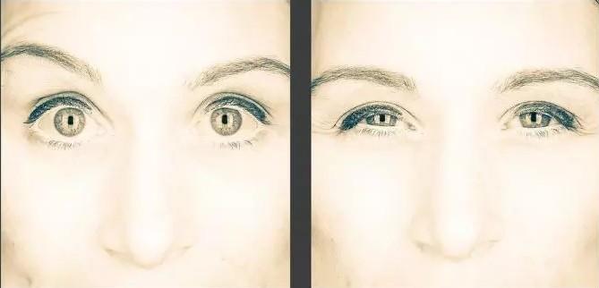 глаза (669x322, 30Kb)