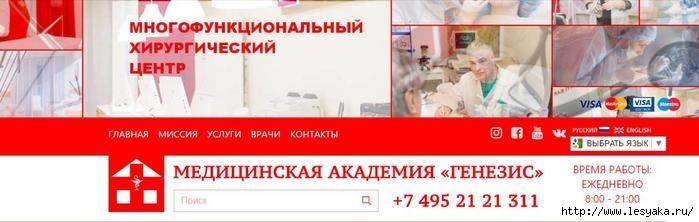 3925073_apap (700x222, 103Kb)