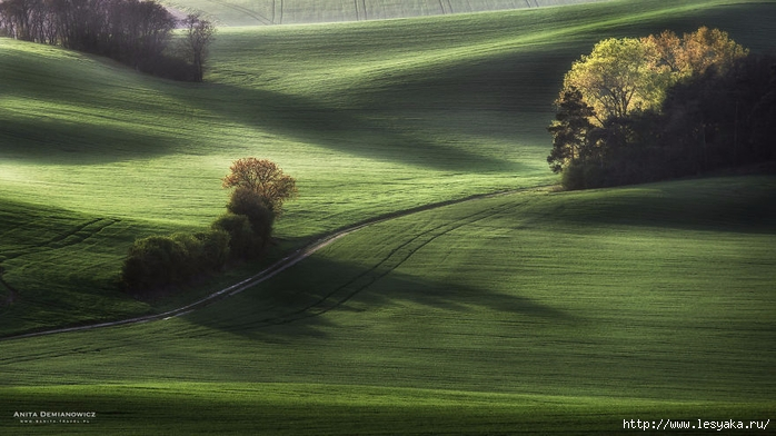 South-Moravian-Region-26-5 (700x392, 217Kb)