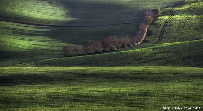 South-Moravian-Region-26-17 (700x382, 265Kb)