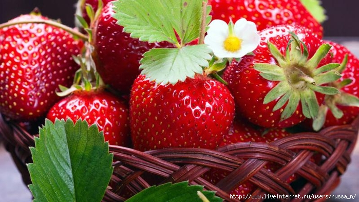fresh_strawberry_korzinka_klubnika_berries_yagody (700x393, 257Kb)