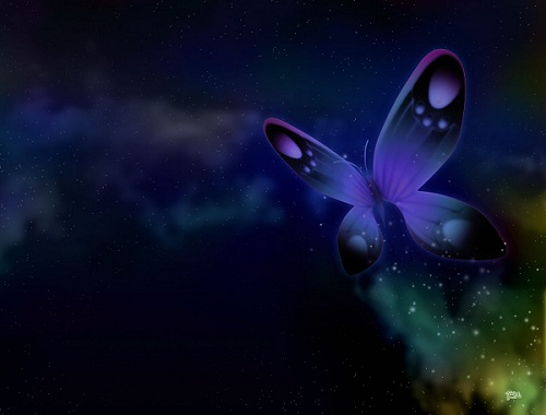 3D-Digital-Butterfly (500x380, 42Kb)