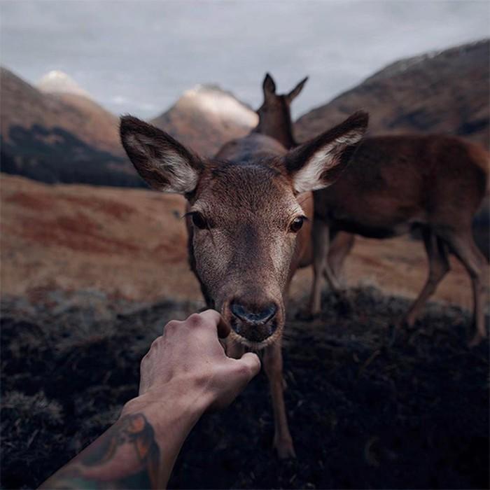 С широко закрытыми глазами: коллекция лучших фотографий Instagram