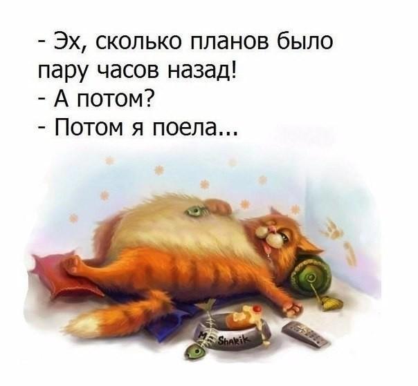 5283370_recepti_yborka (604x559, 49Kb)